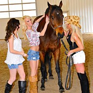 The Whitley Girls | Horse Race Handicappers's Horse Gambling Team
