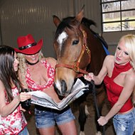 The Whitley Girls | Horse Race Handicappers's Horse Handicapping Expert